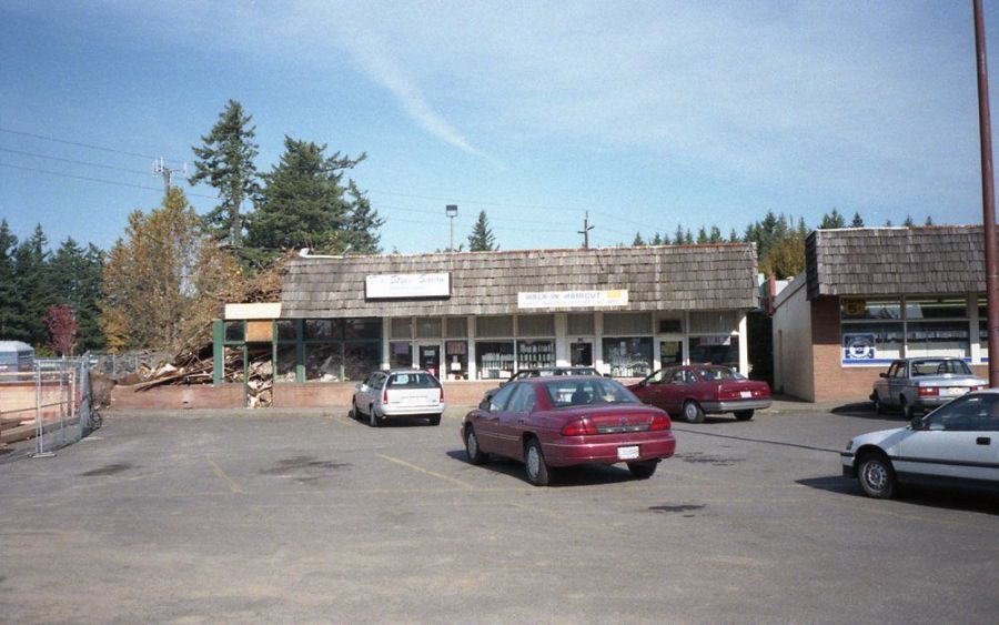 Lambs Thriftway 1995, original strip mall - tear down of Big Tomato Pizza, book store, beauty salon