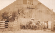 Shattuck Dairy - barn with two men in hay mow, wagon, horses