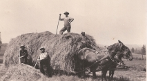 Shattuck Dairy - Hay wagon men