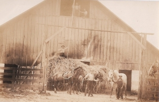 Shattuck Dairy - haying, 2 men above hay mow