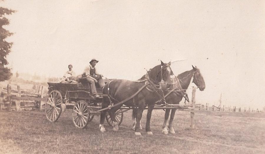 Shattuck Dairy - two men in wagon