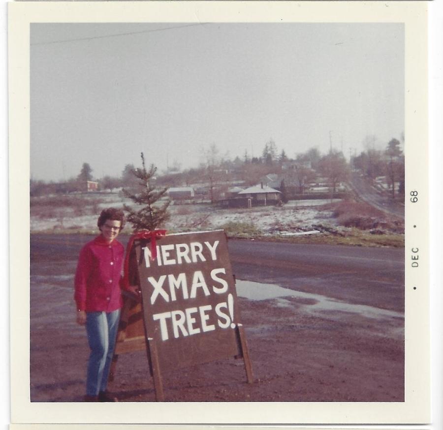 Whitney's Cannery - Flocked Christmas trees - Leona Whitney 1968