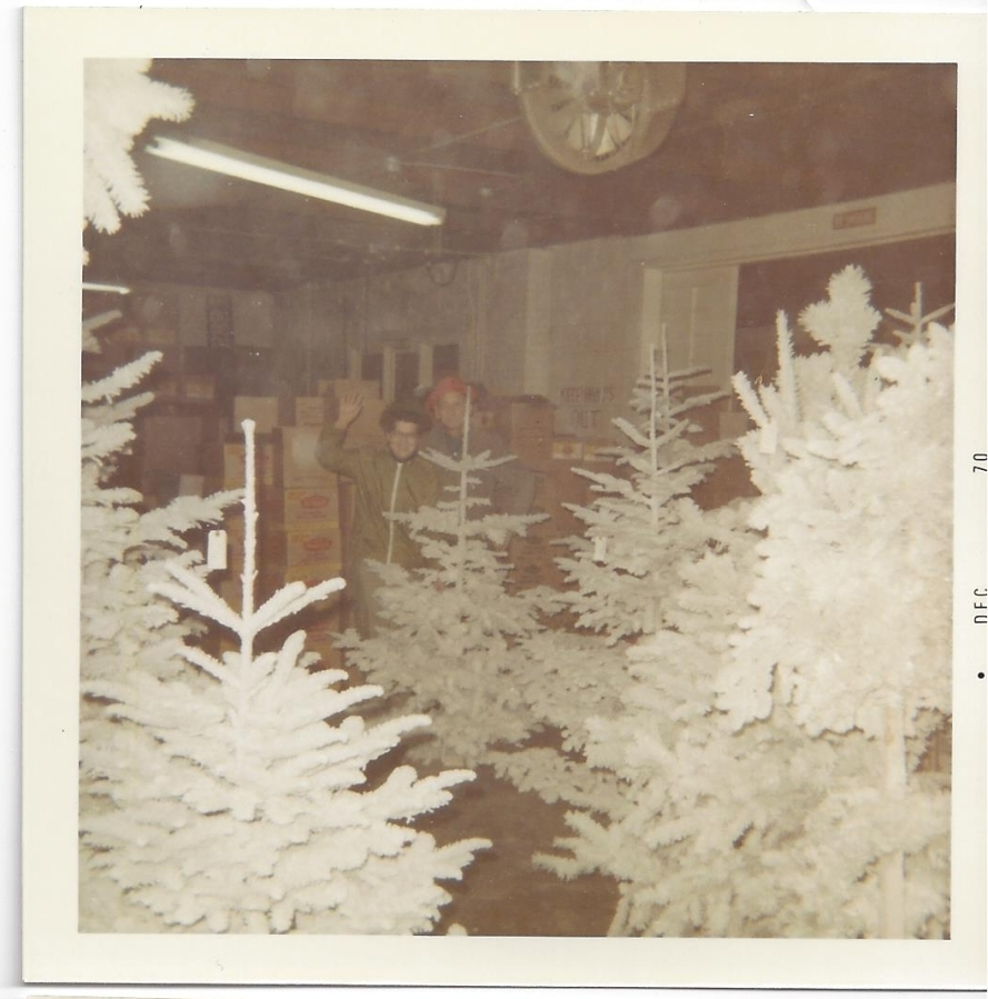 Whitney's Cannery - Flocked Christmas trees - Mark and Leona Whitney 1970