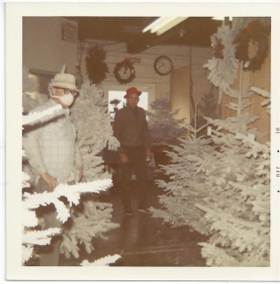 Whitney's Cannery - Flocked Christmas trees - Mask worn due to flocking dust, Mark Whitney in red hat