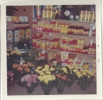 Whitney's Cannery - Fresh flowers and Ortho brand products 1969