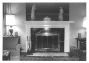 Schanen-Zolling house marble fireplace