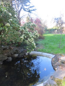 Porshman pond and garden
