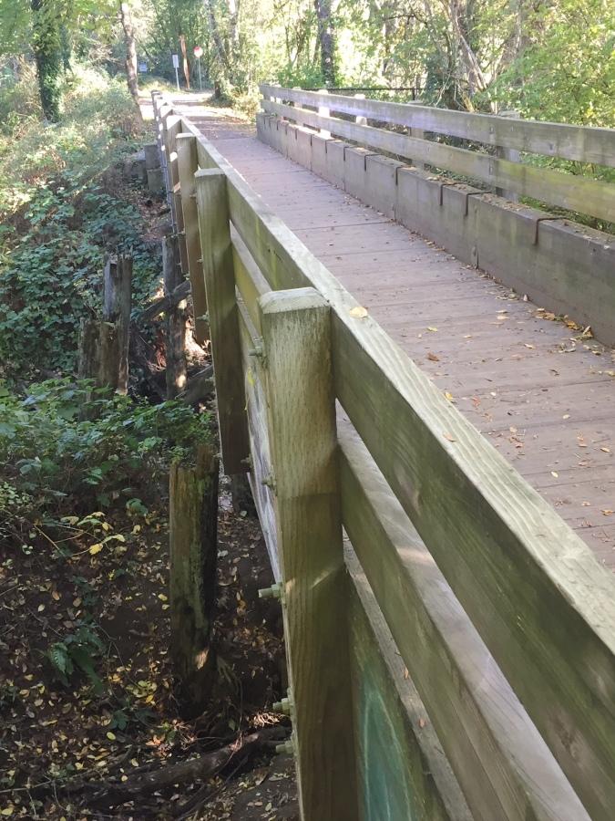 Original train bridge supports over Fanno Creek 1