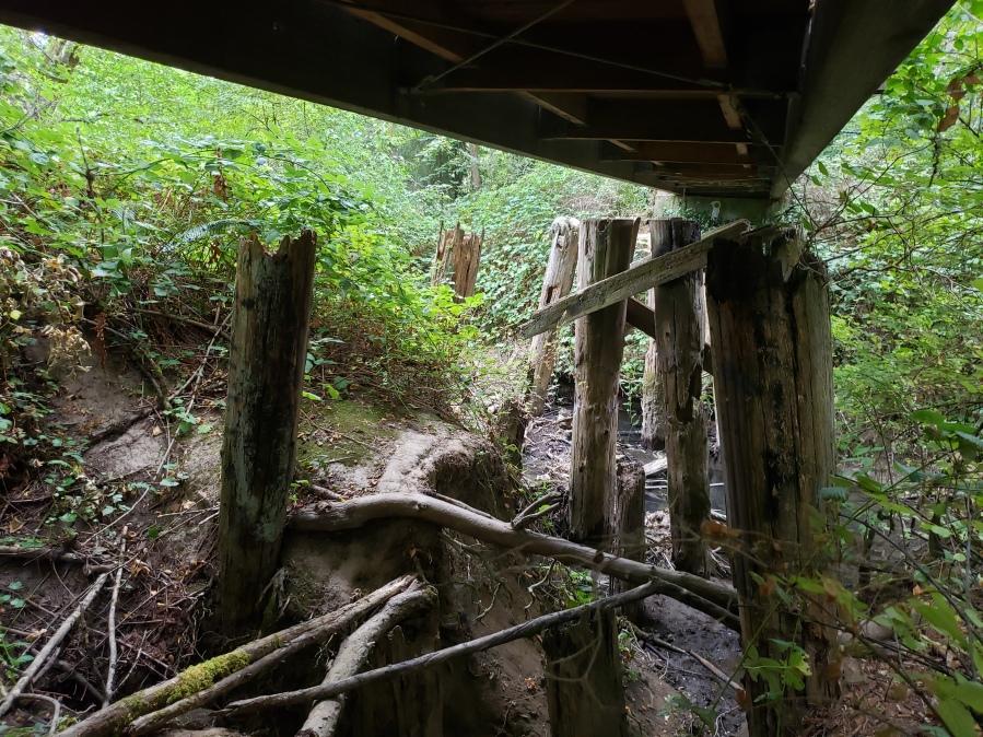 Original train bridge supports over Fanno Creek 2019 by Kevin Mistler