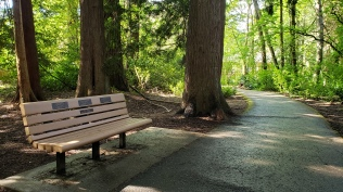 Peter Herman memorial bench - on Fanno Creek Trail