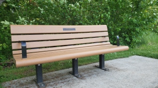 Steve Mapes memorial bench - near the baseball diamond at the Garden Home Recreation Center