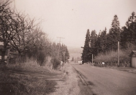 SW Oleson Road, 1948, looking north