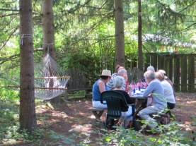 July 4th community picnic at Olson's home