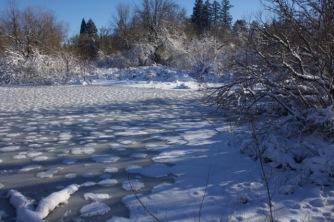 Frozen pond at Vista Brook Park, January 2017