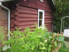 8550 SW Garden Home Rd - Stefanicgrimsbo log cabin - side window