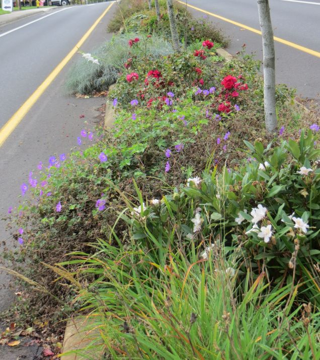 Garden Home Gardeners - SW Oleson Rd