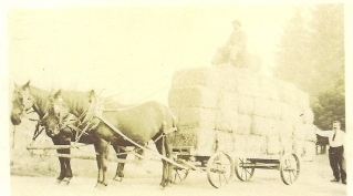 Wagon with stacked square hay bales